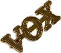 Logo Genuine Vox Gold Small for AC10 & AC50